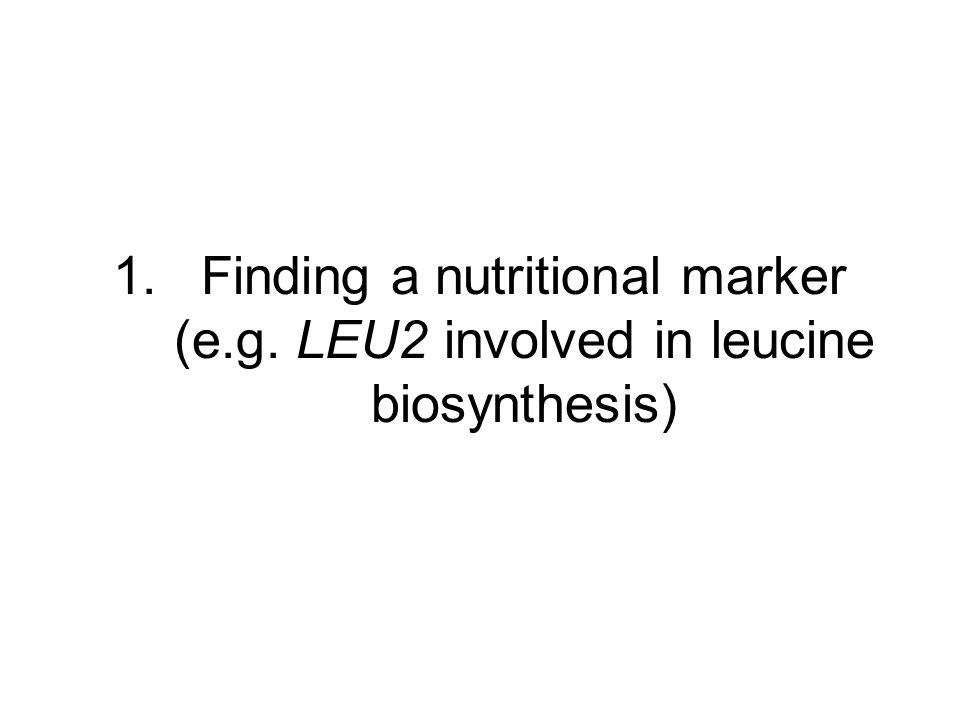 Finding a nutritional marker (e. g