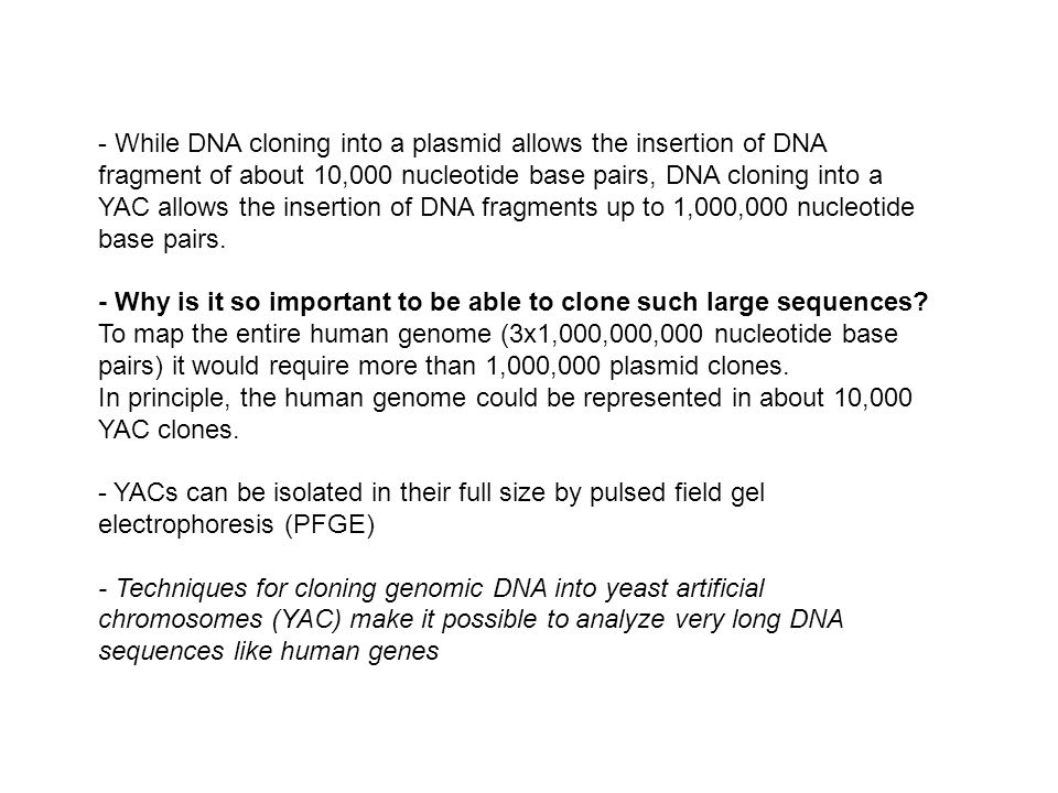 - While DNA cloning into a plasmid allows the insertion of DNA fragment of about 10,000 nucleotide base pairs, DNA cloning into a YAC allows the insertion of DNA fragments up to 1,000,000 nucleotide base pairs.