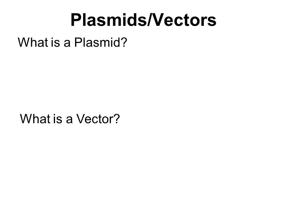 Plasmids/Vectors What is a Plasmid What is a Vector
