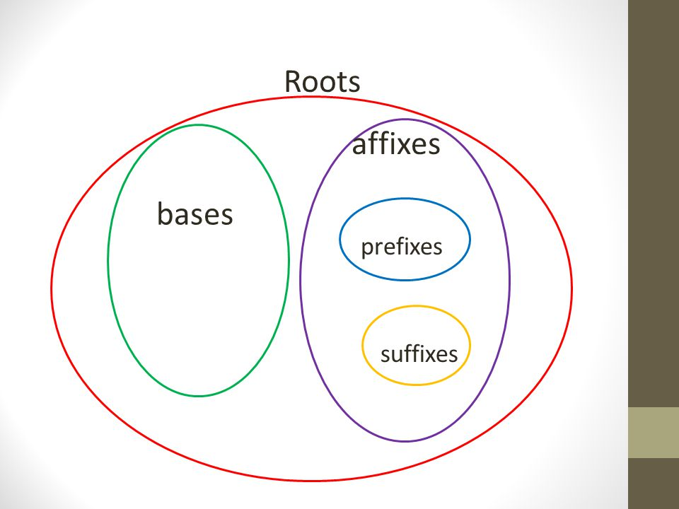 Roots affixes bases prefixes suffixes
