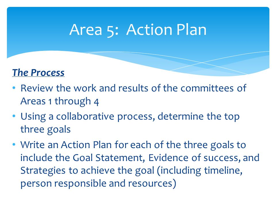 Area 5: Action Plan The Process