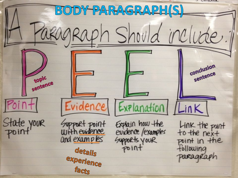 BODY PARAGRAPH(S) details experience facts conclusion sentence topic