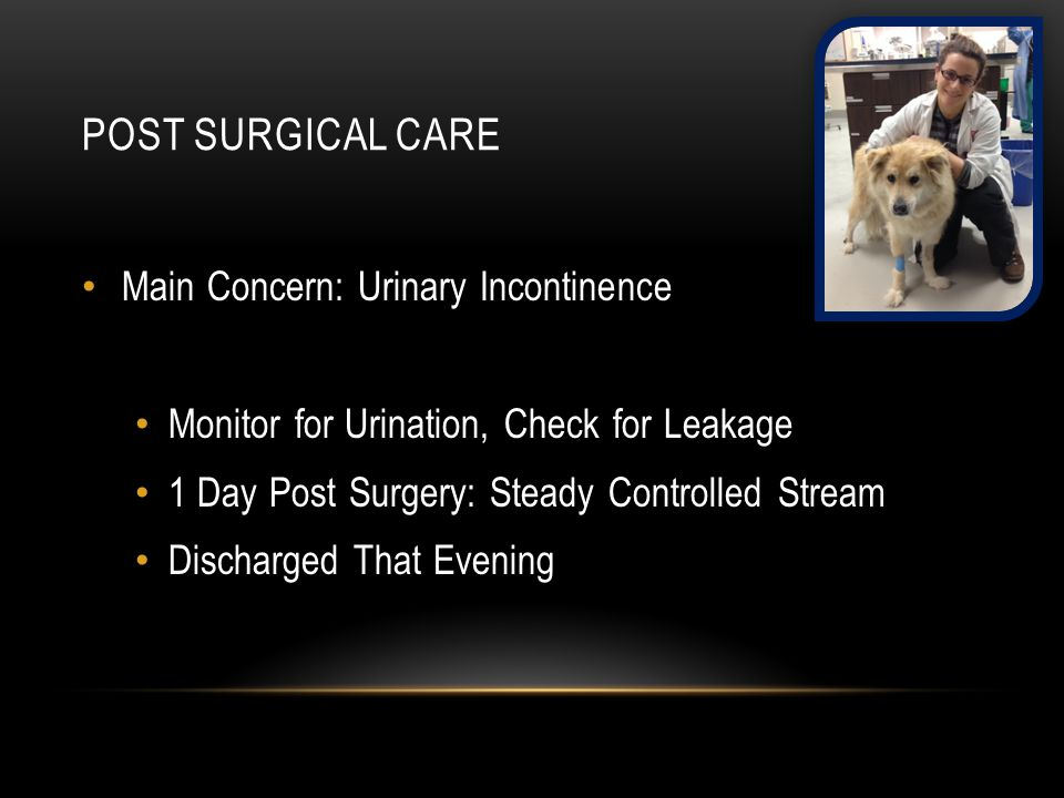 Post surgical care Main Concern: Urinary Incontinence