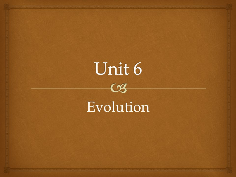 Unit 6 Evolution