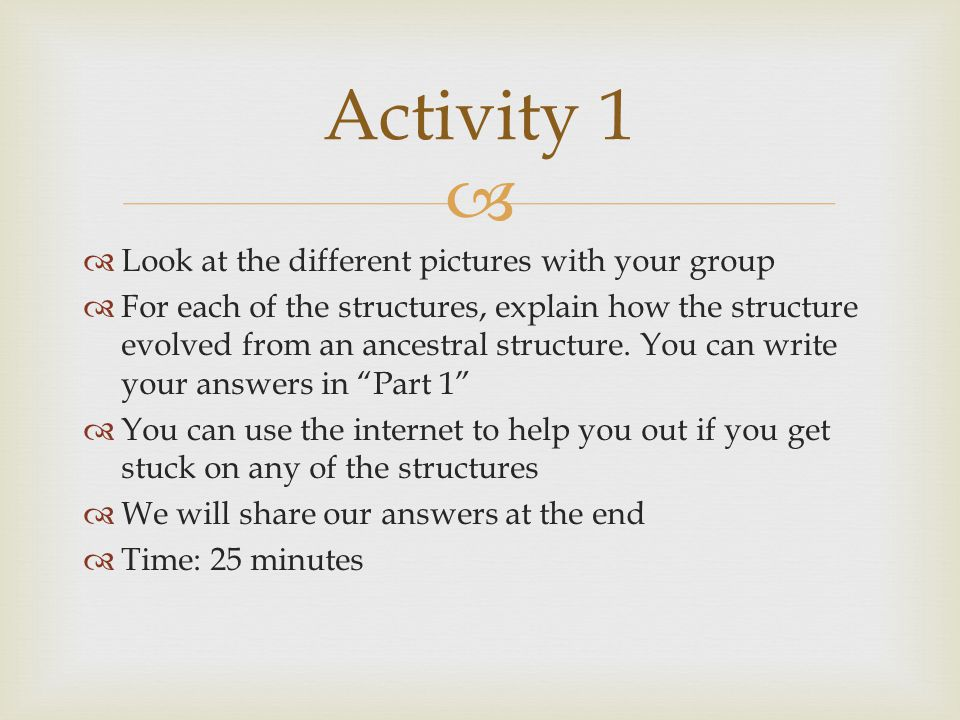 Activity 1 Look at the different pictures with your group
