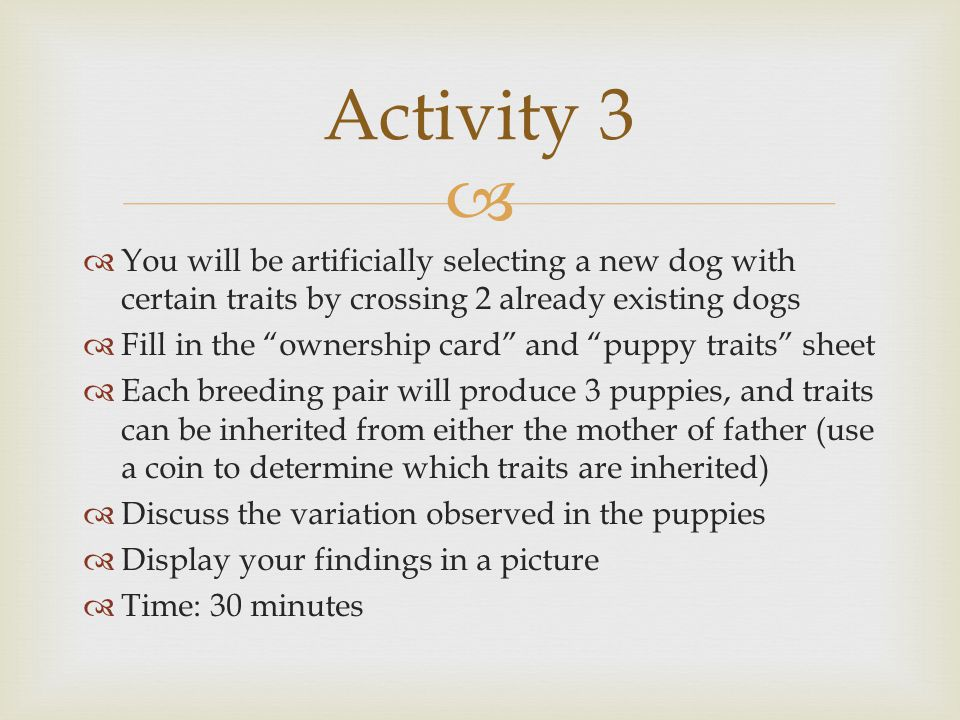 Activity 3 You will be artificially selecting a new dog with certain traits by crossing 2 already existing dogs.