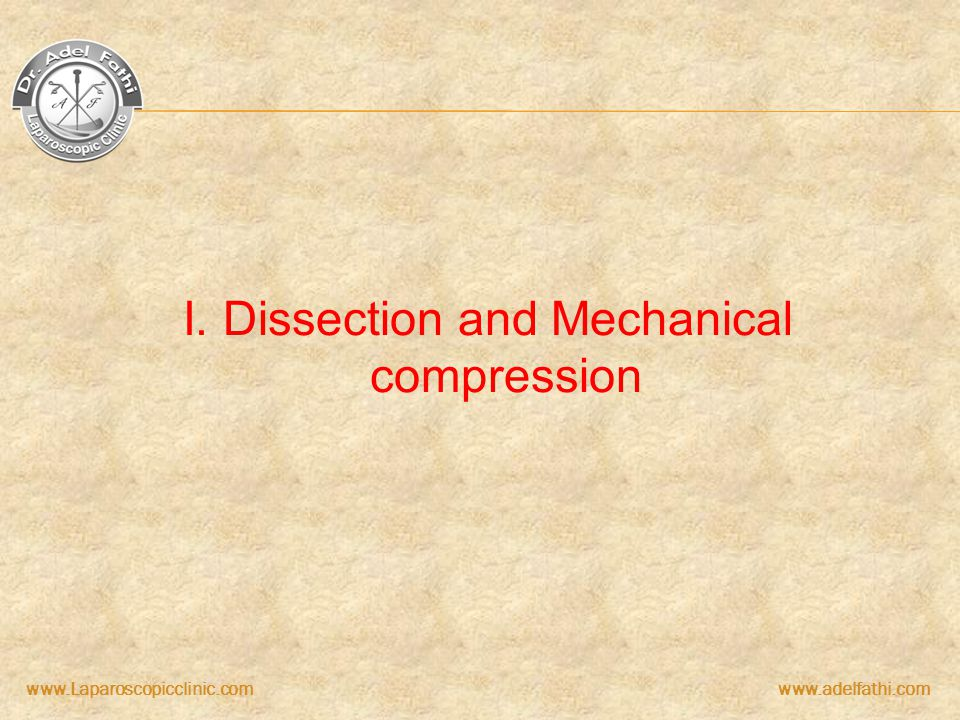 I. Dissection and Mechanical compression