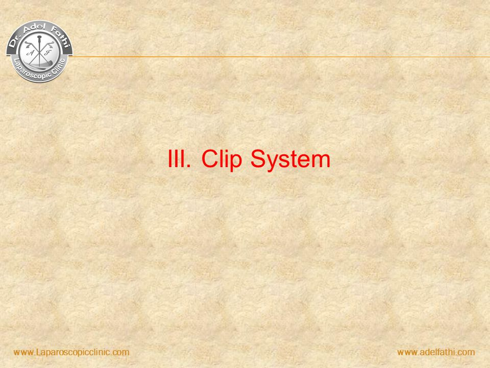 III. Clip System