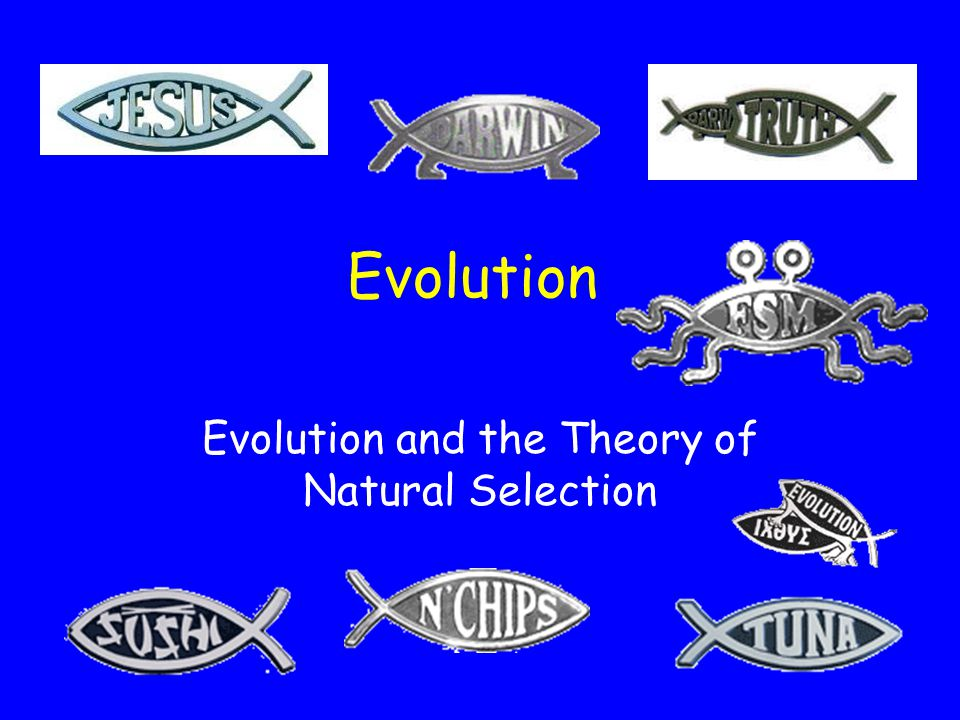 Evolution and the Theory of Natural Selection