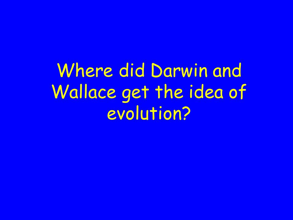 Where did Darwin and Wallace get the idea of evolution