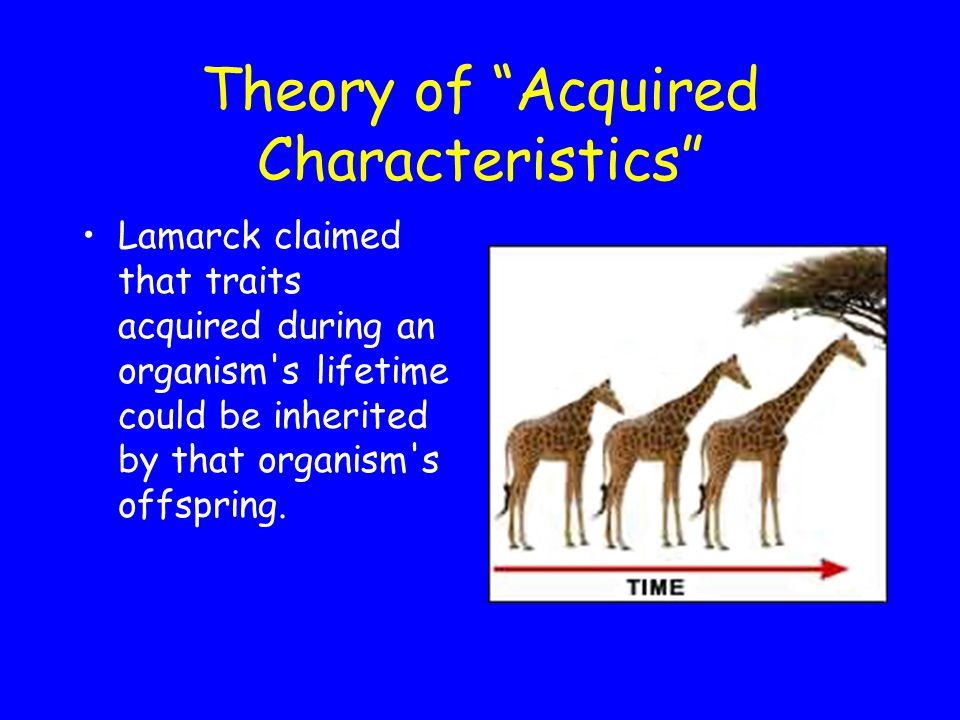 Theory of Acquired Characteristics