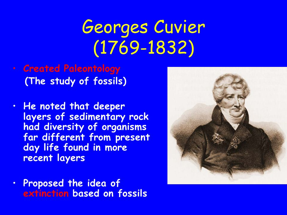 Georges Cuvier (1769-1832) Created Paleontology (The study of fossils)