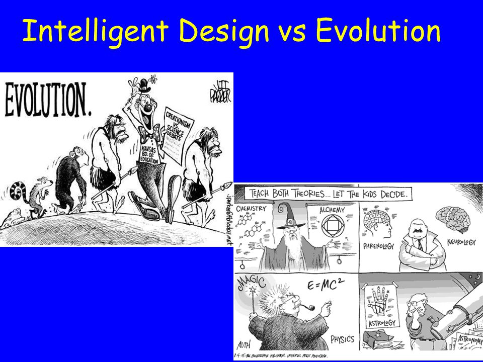 evolution vs intelligent design essay Report abuse home  hot topics  pride & prejudice  evolution vs intelligent design: in this essay are intelligent design, which was part evolution.
