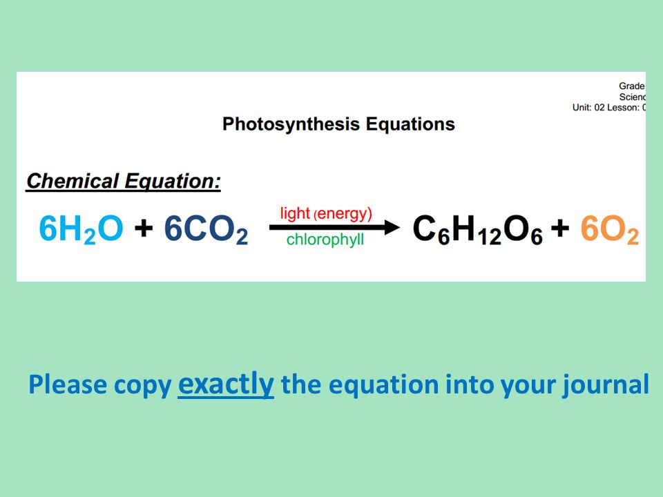 Please copy exactly the equation into your journal