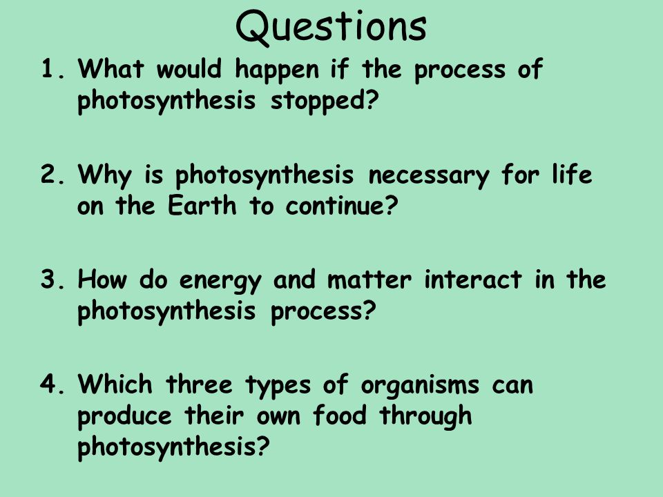 Questions What would happen if the process of photosynthesis stopped