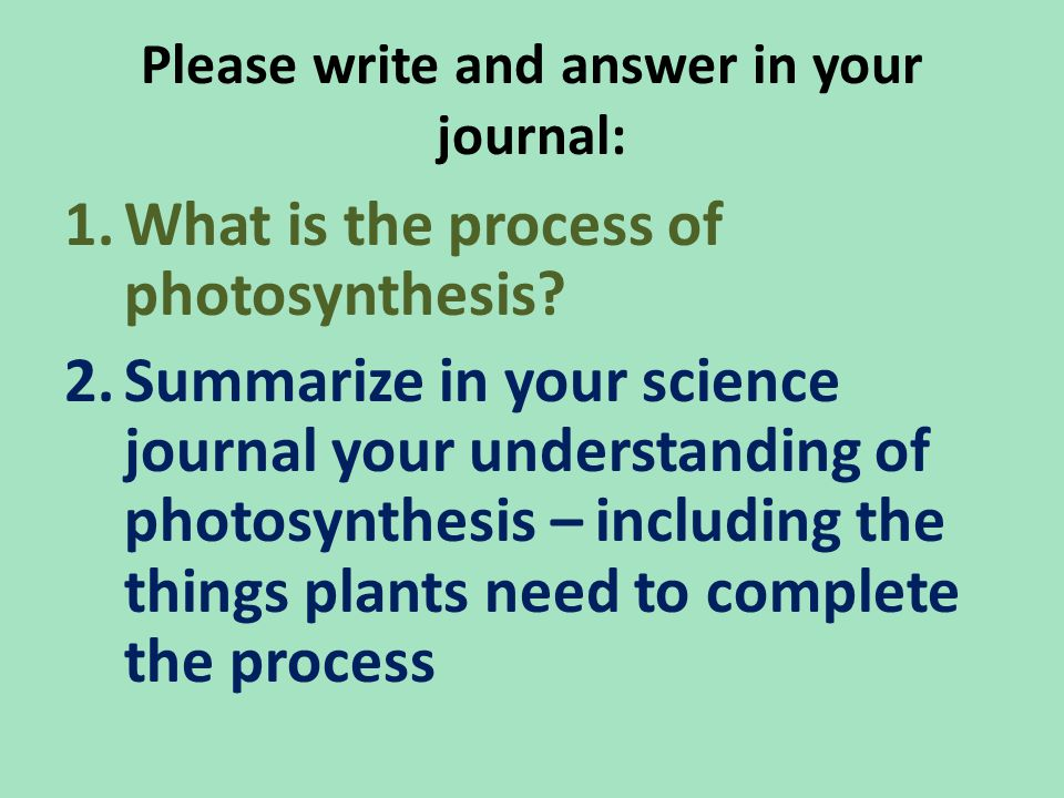 Please write and answer in your journal: