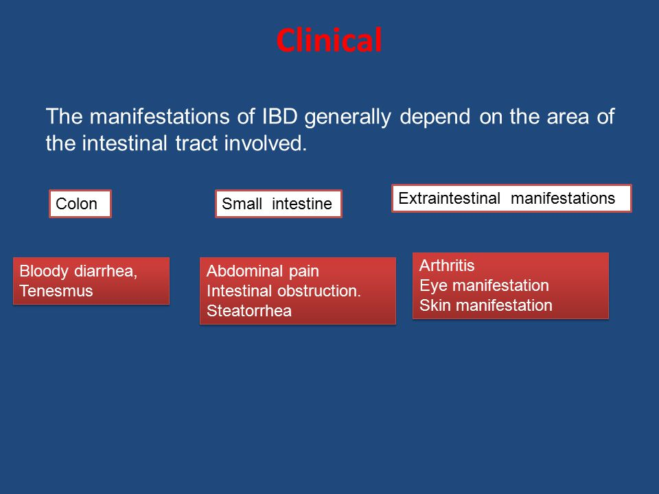 Clinical The manifestations of IBD generally depend on the area of the intestinal tract involved. Extraintestinal manifestations.
