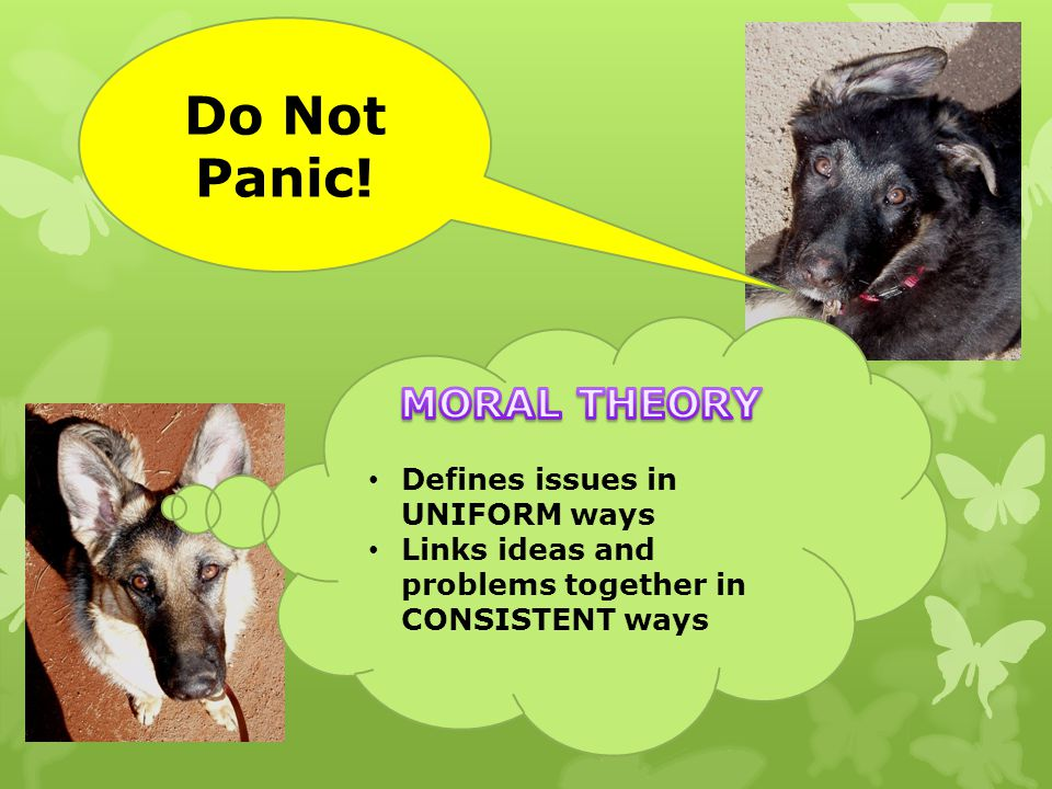 Do Not Panic! MORAL THEORY Defines issues in UNIFORM ways