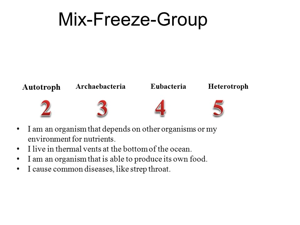 2 3 4 5 Mix-Freeze-Group Autotroph