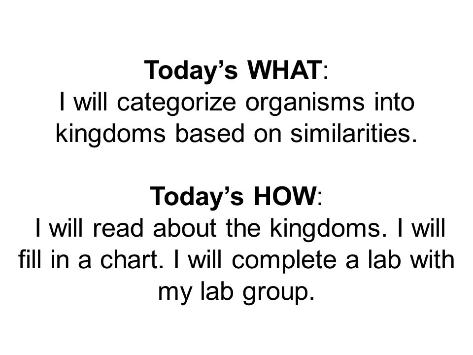 Today's WHAT: I will categorize organisms into kingdoms based on similarities.