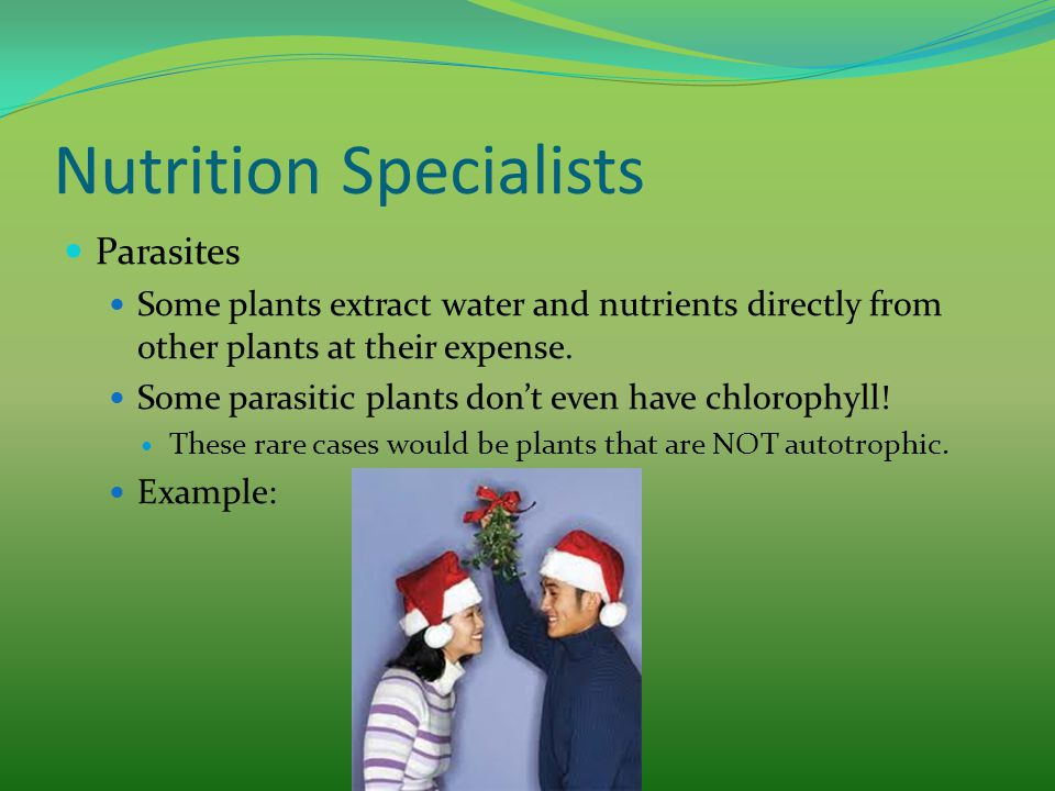 Nutrition Specialists