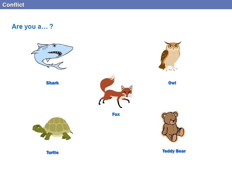 Are you a… Conflict Shark Owl Fox Turtle Teddy Bear