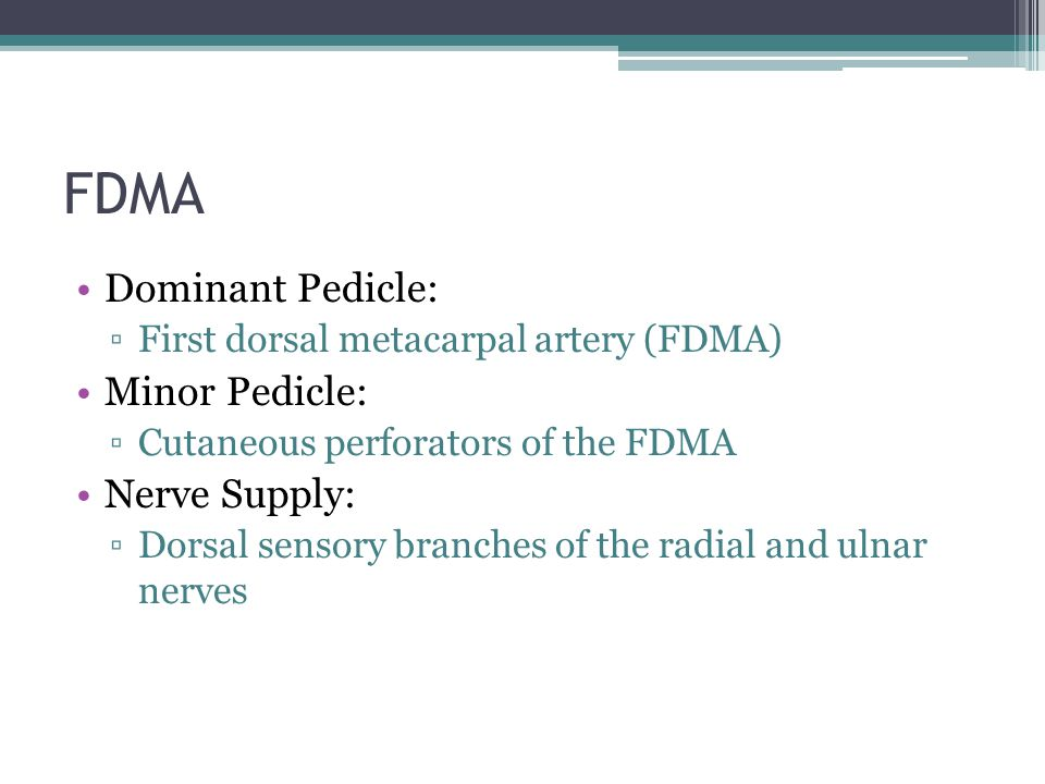 FDMA Dominant Pedicle: Minor Pedicle: Nerve Supply: