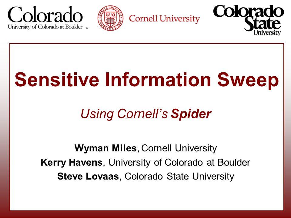 Sensitive Information Sweep