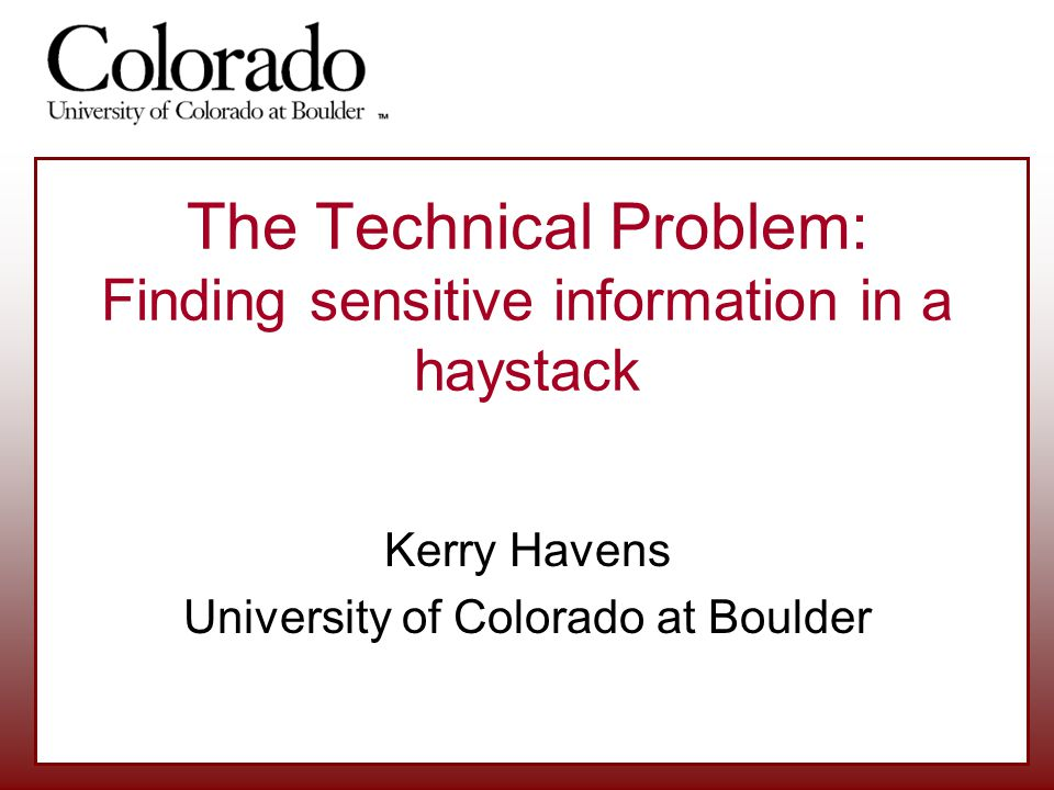 The Technical Problem: Finding sensitive information in a haystack