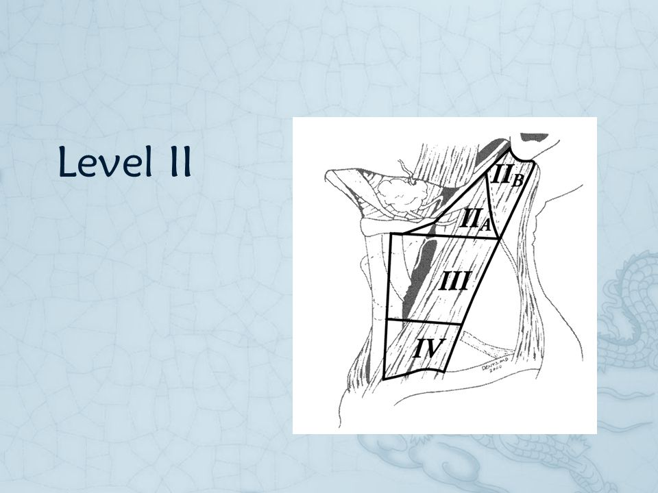 Level II But how about level 2a and 2b, any differences
