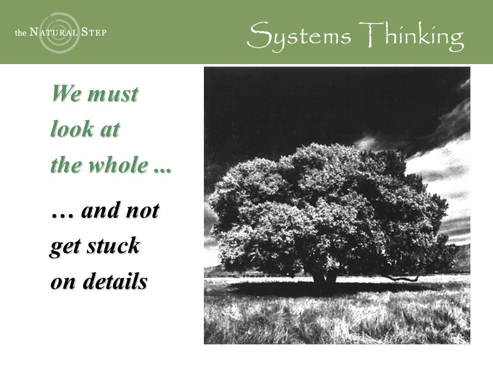 Systems Thinking We must look at the whole ... … and not get stuck