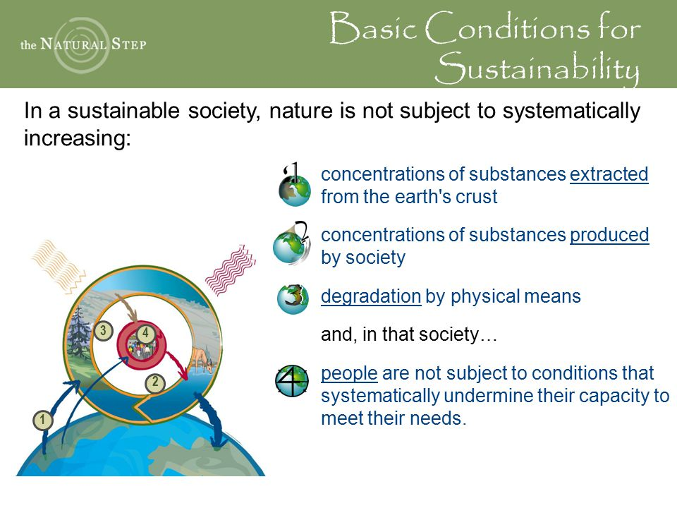 Basic Conditions for Sustainability