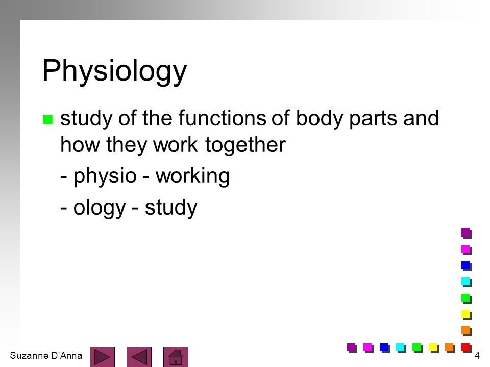 Physiology study of the functions of body parts and how they work together.