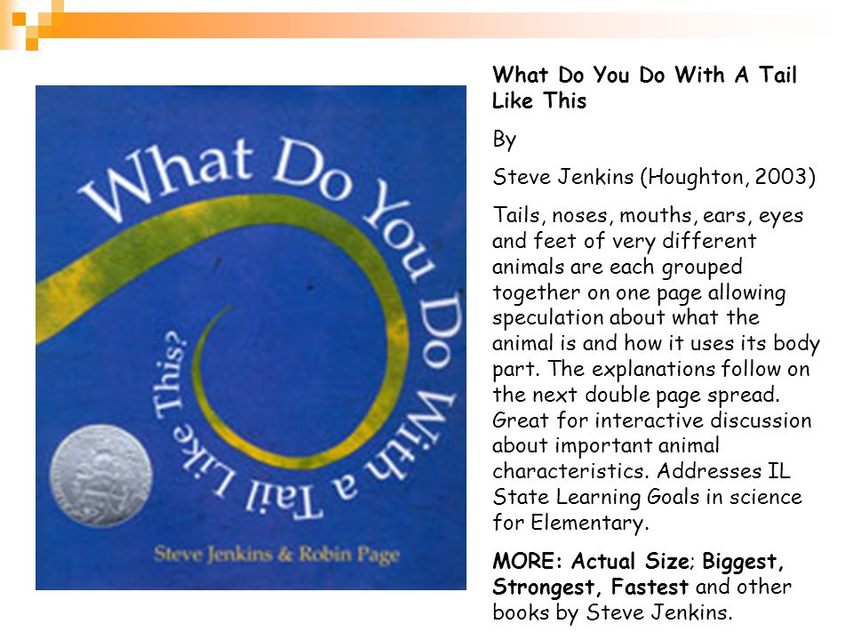 What Do You Do With A Tail Like This By Steve Jenkins (Houghton, 2003)