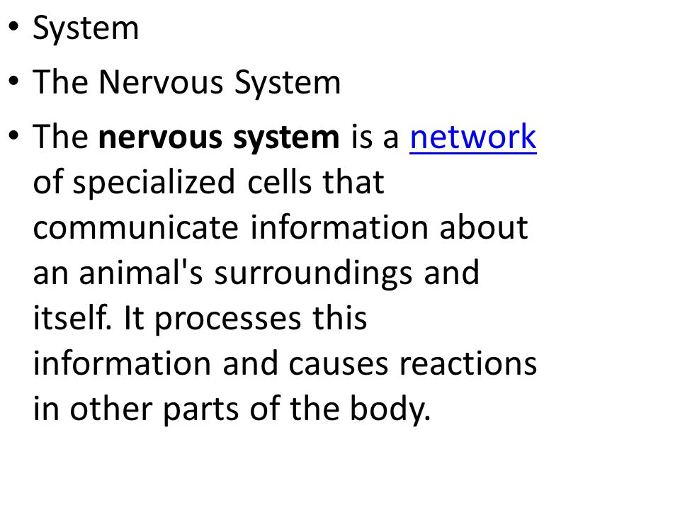 System The Nervous System.