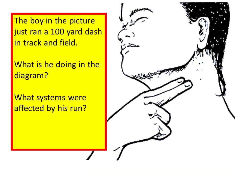 The boy in the picture just ran a 100 yard dash. in track and field. What is he doing in the. diagram
