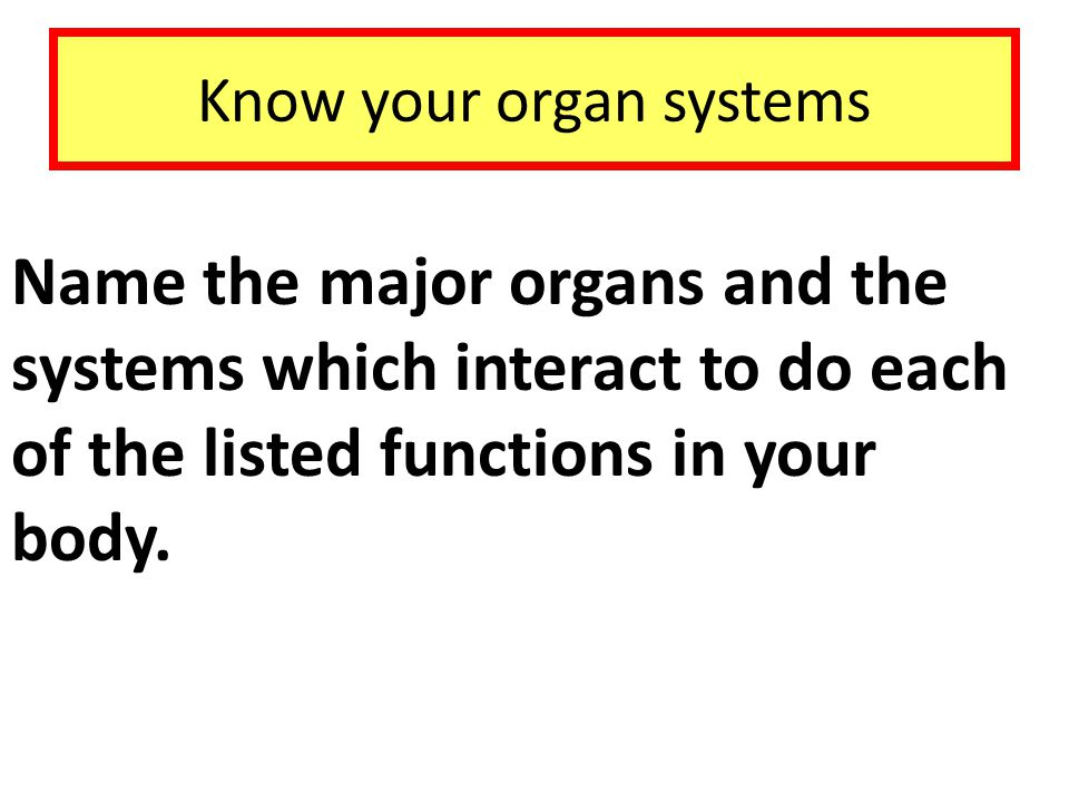 Know your organ systems