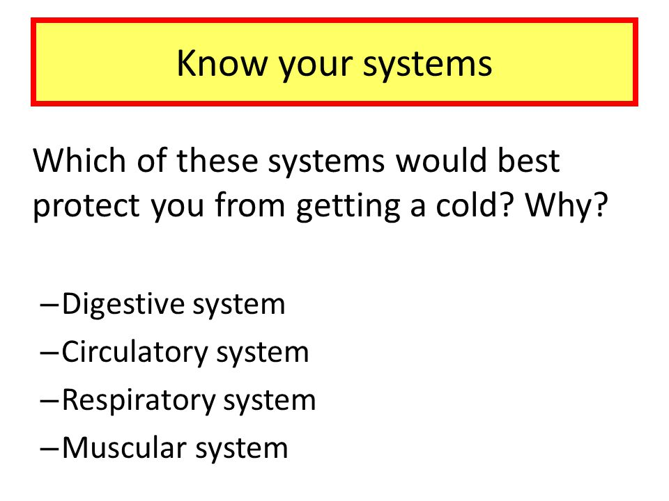 Know your systems Digestive system Circulatory system
