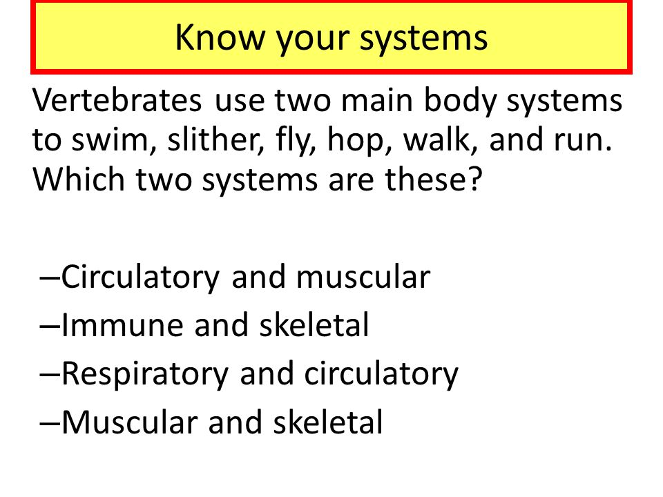 Know your systems Vertebrates use two main body systems to swim, slither, fly, hop, walk, and run. Which two systems are these