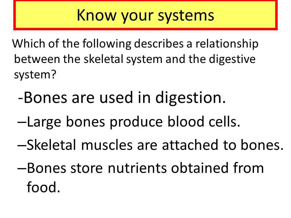 -Bones are used in digestion.