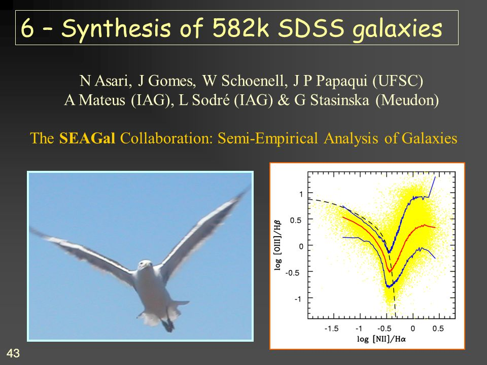 6 – Synthesis of 582k SDSS galaxies