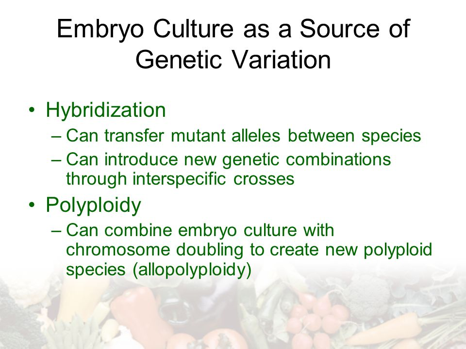 Embryo Culture as a Source of Genetic Variation