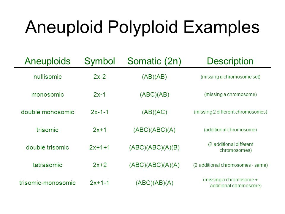 Aneuploid Polyploid Examples