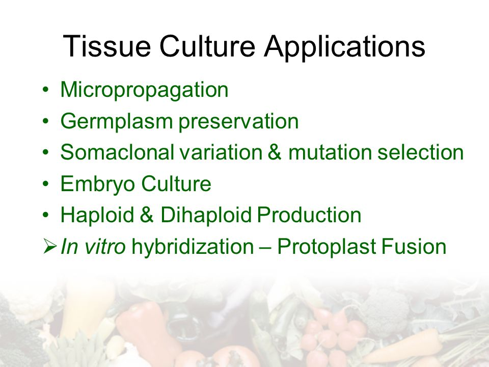 Tissue Culture Applications