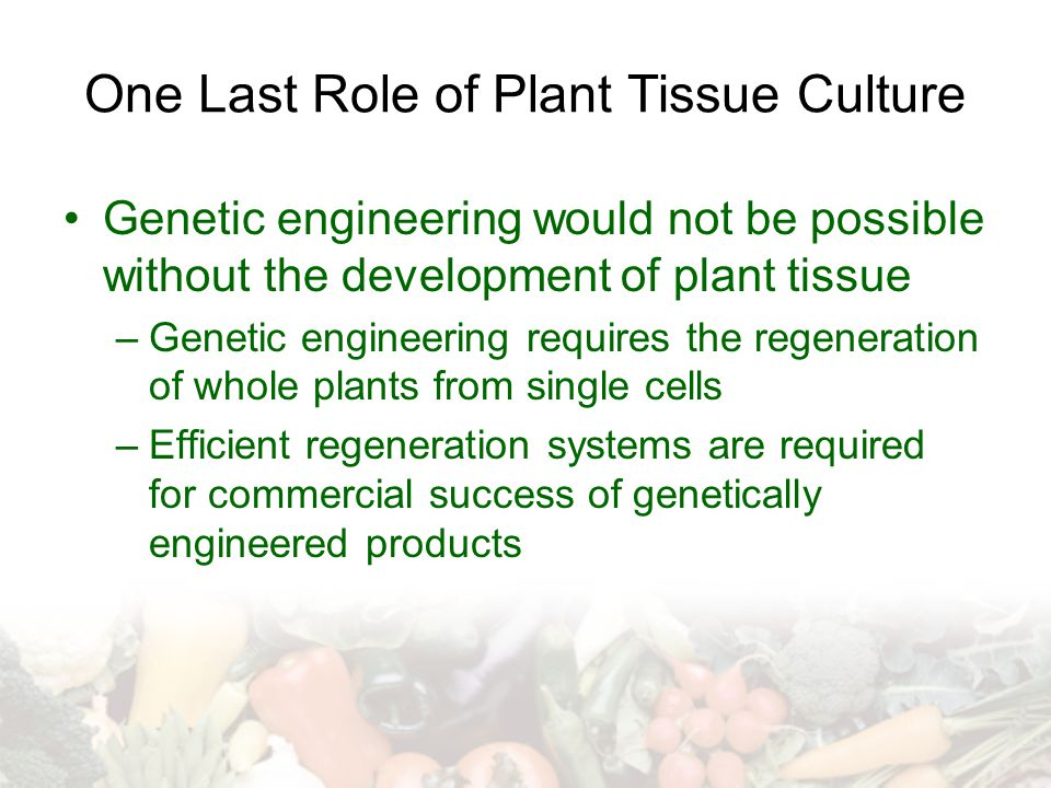 One Last Role of Plant Tissue Culture