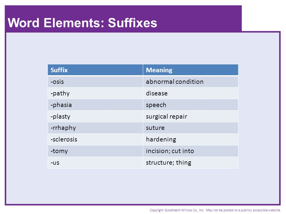Word Elements: Suffixes
