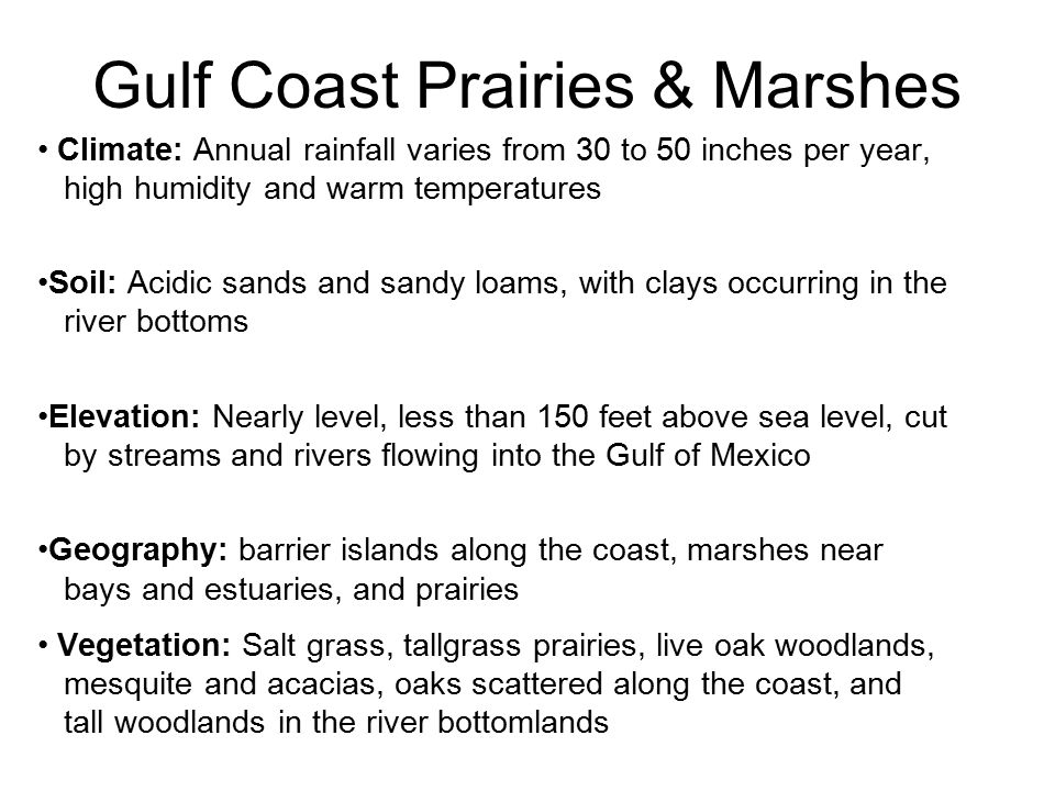 Gulf Coast Prairies & Marshes