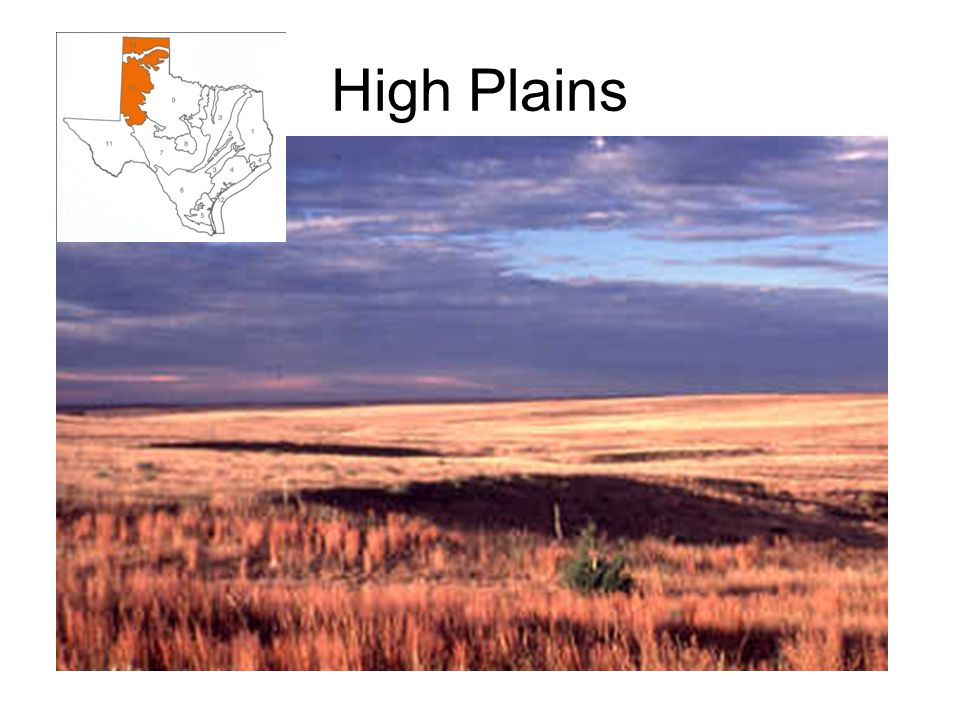 High Plains