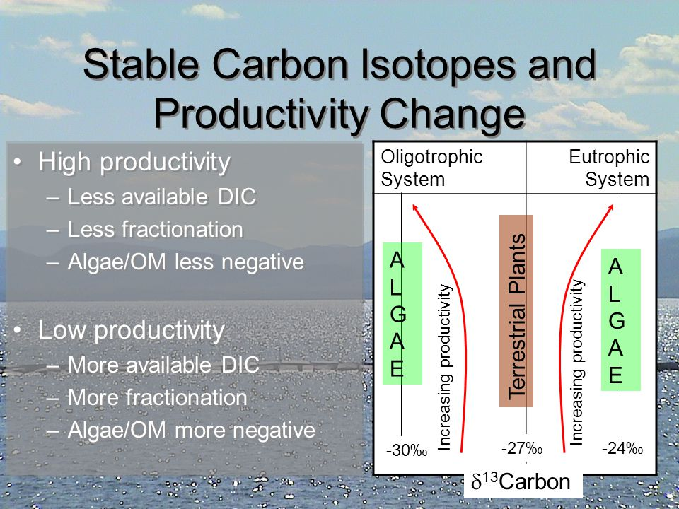 Stable Carbon Isotopes and Productivity Change