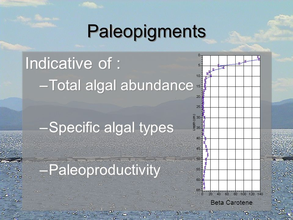 Paleopigments Indicative of : Total algal abundance